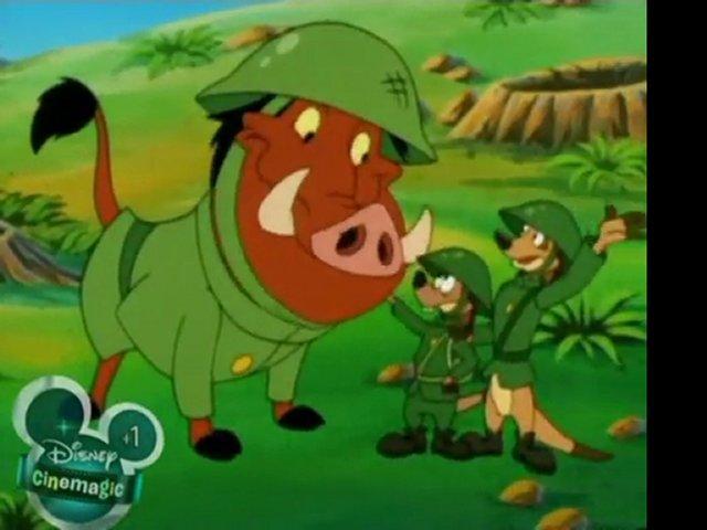 War Hogs