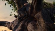 Lionking2019-animationscreencaps.com-8793