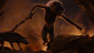 Lionking2019-animationscreencaps.com-11872