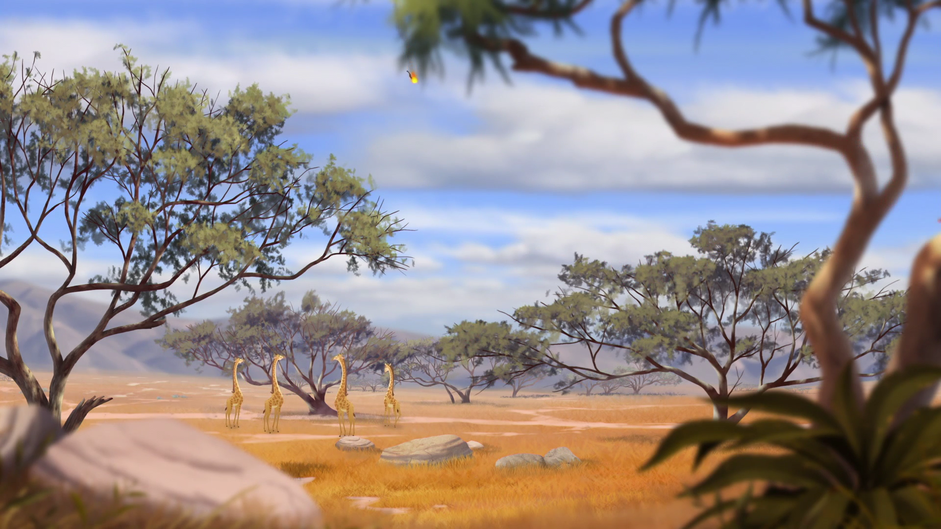 Acacia Grove