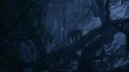 Lionking2019-animationscreencaps.com-10117