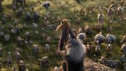 Lionking2019-animationscreencaps.com-12790