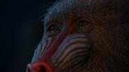Lionking2019-animationscreencaps.com-1037