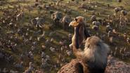 Lionking2019-animationscreencaps.com-395