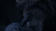Lionking2019-animationscreencaps.com-12575