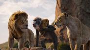 Lionking2019-animationscreencaps.com-12763