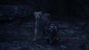 Lionking2019-animationscreencaps.com-12627
