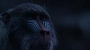 Lionking2019-animationscreencaps.com-12582