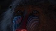 Lionking2019-animationscreencaps.com-1101