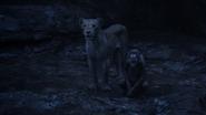 Lionking2019-animationscreencaps.com-12630