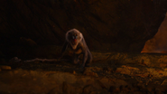 Lionking2019-animationscreencaps.com-11882