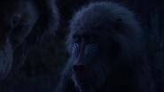 Lionking2019-animationscreencaps.com-10253