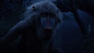 Lionking2019-animationscreencaps.com-10163