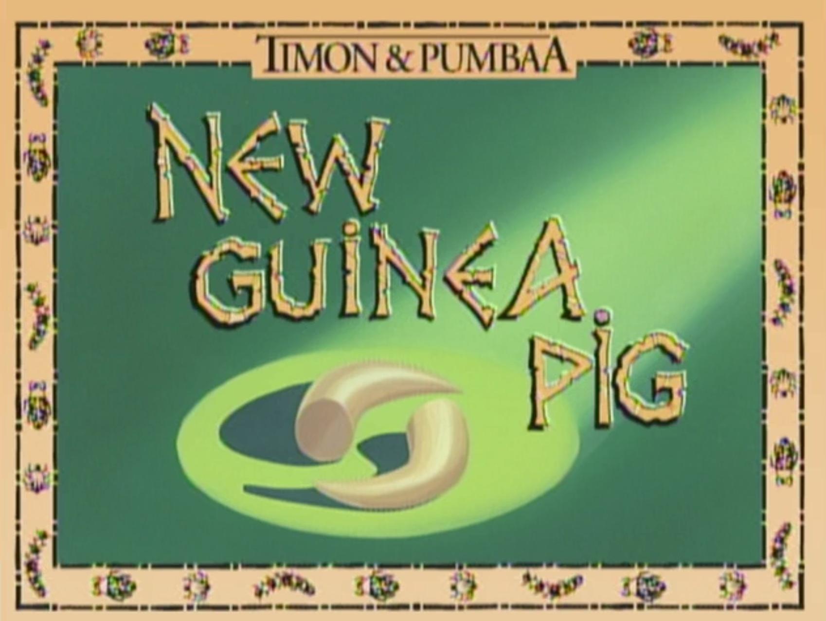 New Guinea Pig