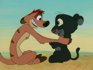 UIL Timon & panther4