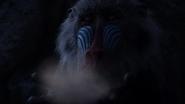 Lionking2019-animationscreencaps.com-1077