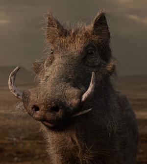 Pumbaa 2019.png
