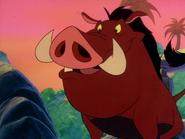 TLOTJ Pumbaa12