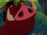 TLOTJ Pumbaa2