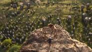 Lionking2019-animationscreencaps.com-12761