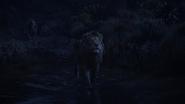 Lionking2019-animationscreencaps.com-10364