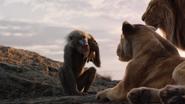 Lionking2019-animationscreencaps.com-335