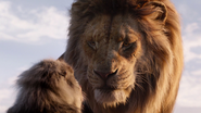 Lionking2019-animationscreencaps.com-268