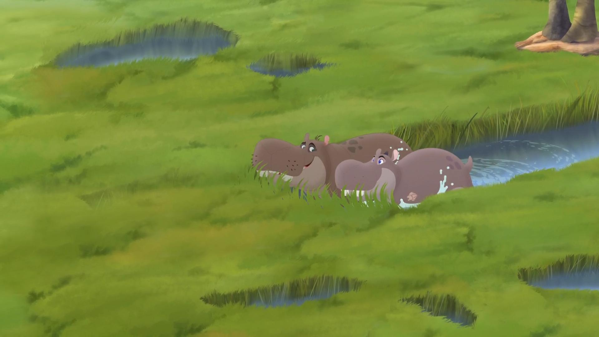 Hippo lanes