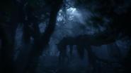 Lionking2019-animationscreencaps.com-10068