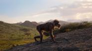 Lionking2019-animationscreencaps.com-253