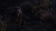 Lionking2019-animationscreencaps.com-10417