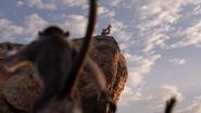 Lionking2019-animationscreencaps.com-387
