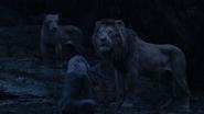 Lionking2019-animationscreencaps.com-12588