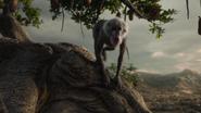 Lionking2019-animationscreencaps.com-11019
