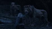Lionking2019-animationscreencaps.com-12583