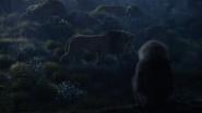 Lionking2019-animationscreencaps.com-9905