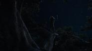 Lionking2019-animationscreencaps.com-1136