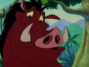 UIL Pumbaa3