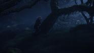 Lionking2019-animationscreencaps.com-9945