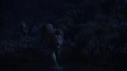 Lionking2019-animationscreencaps.com-10359