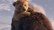 Lionking2019-animationscreencaps.com-349