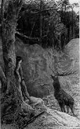 Flaubert Trois contes 1895 Saint Julien Luc-Olivier Merson 6