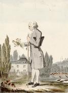 Rousseau Mayer