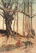 Arthur Rackham Little Red Riding Hood