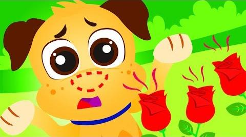 Where Is My Nose? Paw Patrol Puppies, Dog Nose by Little Angel