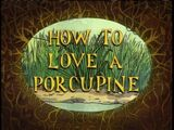 How to Love a Porcupine