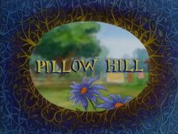 Pillow Hill.jpg