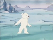 Little Bear in the North Pole