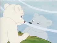 White Little Bear sees his reflection