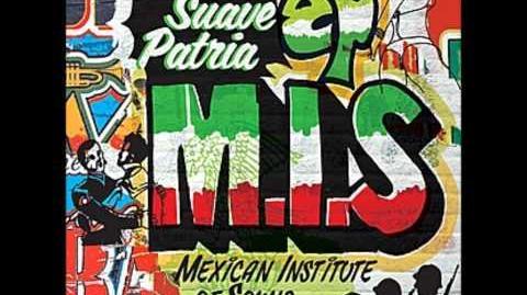 Mexican Institute Of Sound - Territorio